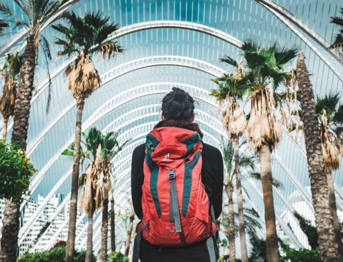 Best Gregory Backpacks Reviews: Top Backpack Brand [2019]
