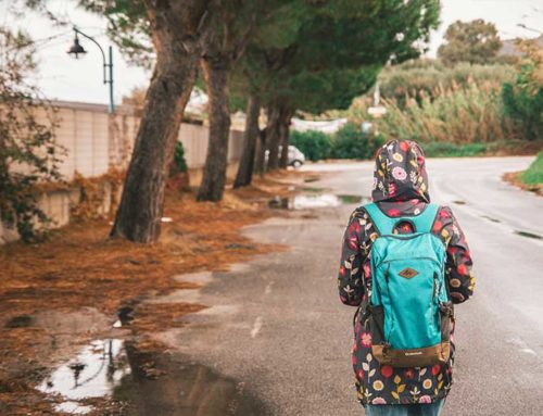 Best Heritage Backpacks Reviews: A Simple Buying Guide for Your Next Buy